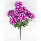 Bouquet de dahlias, violet