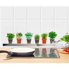 Sticker mural Plantes aromatiques