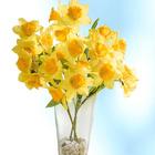 Bouquet « Narcisses »