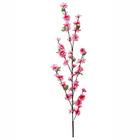 Branche Fleurs de cerisier, fuchsia