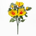Bouquet d'hibiscus, jaune