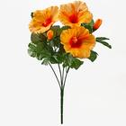 Bouquet d'hibiscus, orange