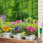 Système d'arrosage pour plantes